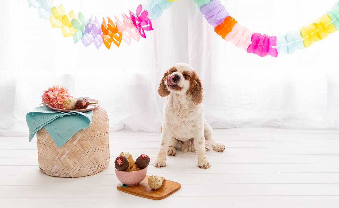 Pup-Cones